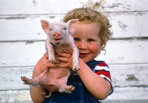 Boy holds piglet