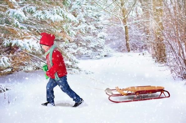 winter-background-1853543_640